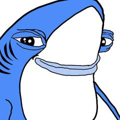 Shark <3